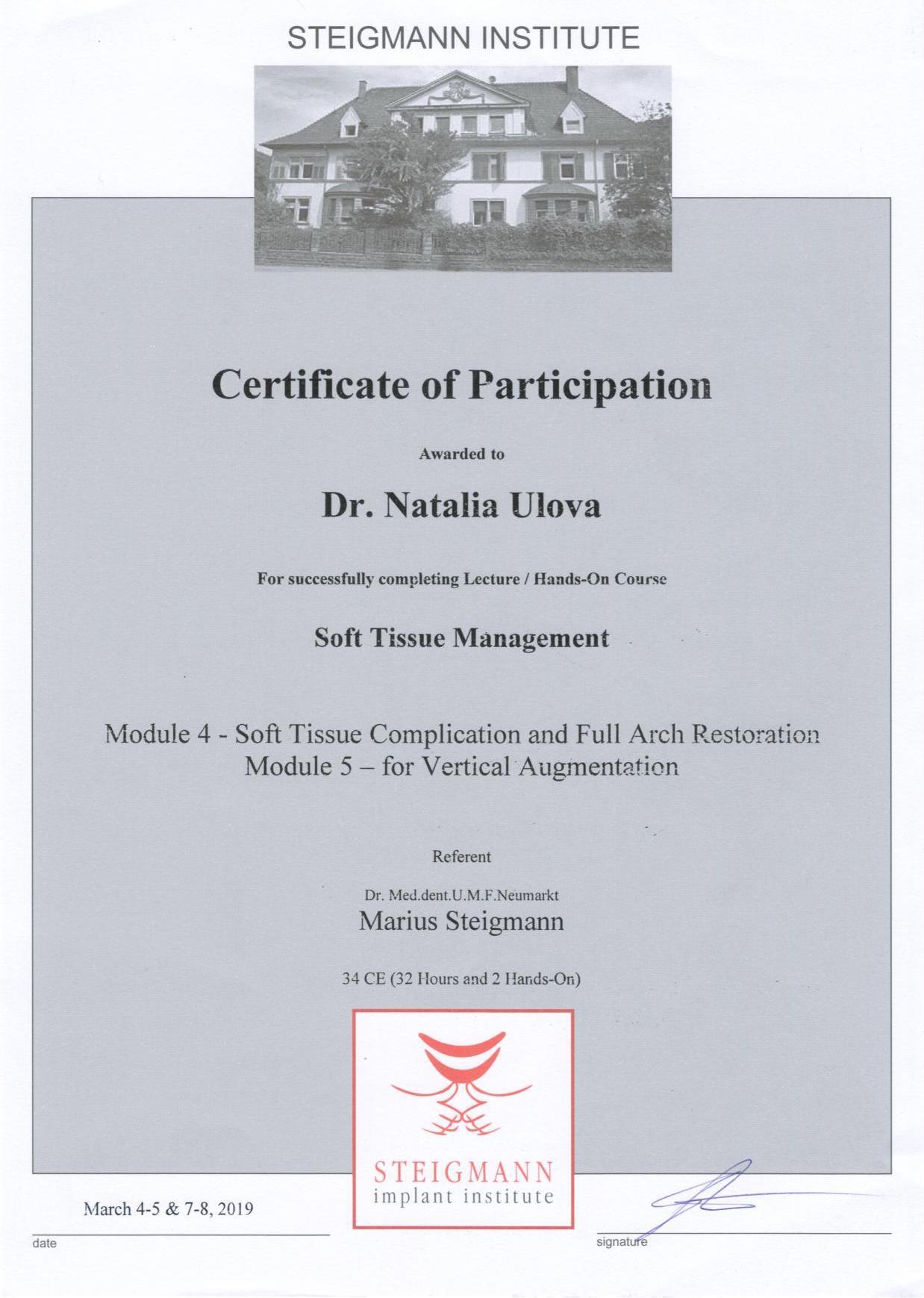 Сертификат участника (2019)
